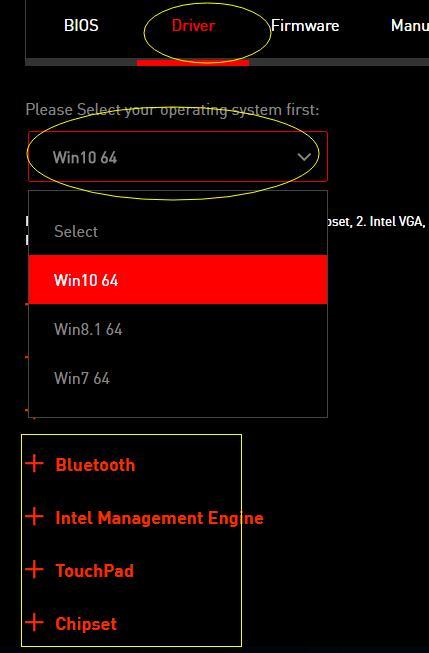 choose msi driver version