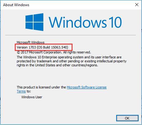 windows 10 bulid number