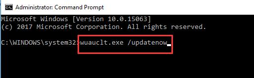wuauclt.exe update now