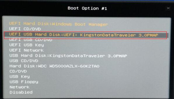 choose the usb drive in boot option