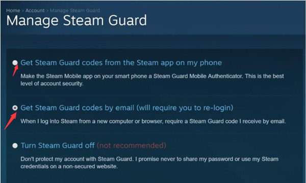 get steam guard codes by email