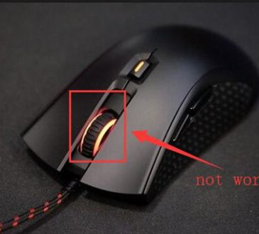 middle mouse button not working