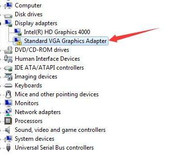 standard vga graphics adapter