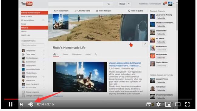 check youtube video sound icon