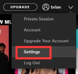 spotify settings
